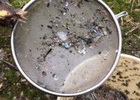 Представители муниципалитета подозревают, что нашли компанию, загрязняющую Нерис