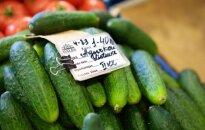 Ieškau ekonomisto, galinčio paaiškinti agurko kainą Lietuvoje