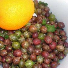 """<span style=""""color: #ff0000;"""">Šaldom žiemai:</span> agrastai su apelsinais"""