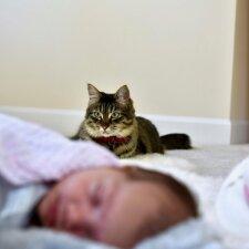 Ar negimęs kūdikis jaučia mamos stresą ir džiaugsmą?