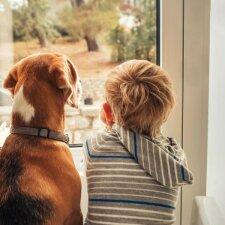 Išsiskyrusi pora dėl savo sūnaus daro tai, ką ne visi galėtų