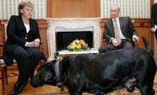 Немецкий политолог: по мнению Путина, главная проблема — Меркель