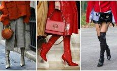 Batai virš kelių – kojos lig kaklo: keturios <em>must have</em> avalynės tendencijos