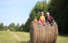 Vaikas ir vasaros atostogos: 5 dalykai, kurių nevalia pamiršti