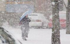 Prognozuojama, kad šią žiemą sniego bus