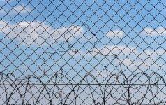 Венгрия достроила второй забор на границе с Сербией