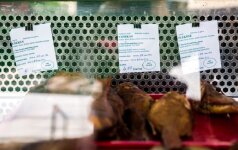 Цены на рыбу на взморье: выводы делайте сами