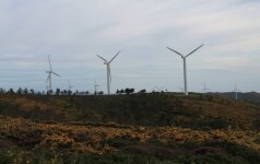 Возобновляемая энергетика обогнала угольную по мощностям