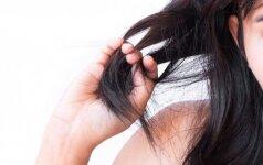 Sezoninis plaukų slinkimas: neišlaidauk, o gudriai naudok elementarius produktus