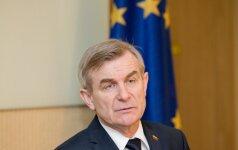 Спикер Сейма Литвы: мы не добились того, чтобы БАЭС строилась в другом месте