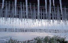 Stintapūkio organizatoriai kviečia pasigėrėti ir išskirtinėmis ledo skulptūromis Nidoje