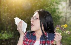 Ką turėtumėte žinoti apie alerginę slogą