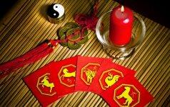 Kinų horoskopas 2017 metams – kam jie bus sėkmingi
