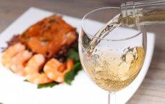 Vyno žinynas, išsiskiriantis šviežiu dizainu ir paprastai pateikta grafine medžiaga