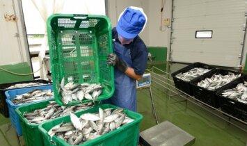 Žuvies fabrikas