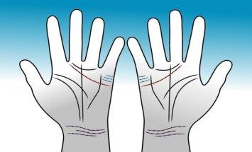 Suglausk savo delnus ir pažiūrėk kaip susikerta tavo linijos