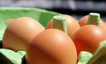Kaip atpažinti pirmuosius salmoneliozės simptomus