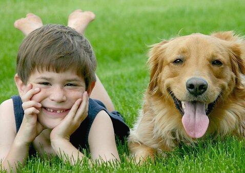Perkate šunį ar katę dėl vaiko? – Įsiklausykite, ką sako specialistė