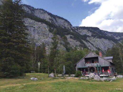 D. Ibelhauptaitė: atgauti jėgų ir išsivalyti – į kliniką Austrijoje