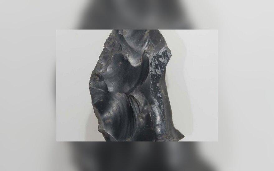 Археологи обнаружили старейшее в мире оружие