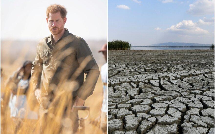 Princas Harry palaiko Thunberg: pasiteisinimo neigti klimato kaitą nėra, nes mokslas nepaneigiamas (DELFI montažas (Reuters / Scanpix)