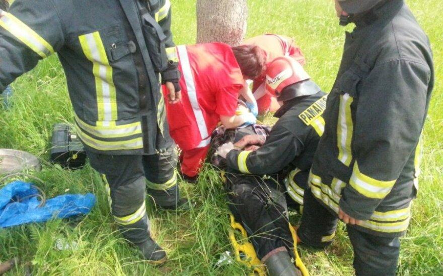 Пьяный водитель на Audi 80 врезался в дерево