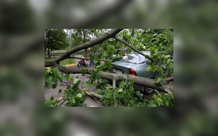 Сильный шторм в Москве и Подмосковье: один погибший, 17 пострадавших