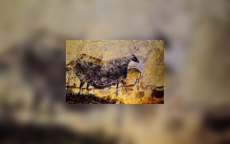 Lasko uolos piešinys, kaip manoma, nupieštas prieš 16 tūkst. metų