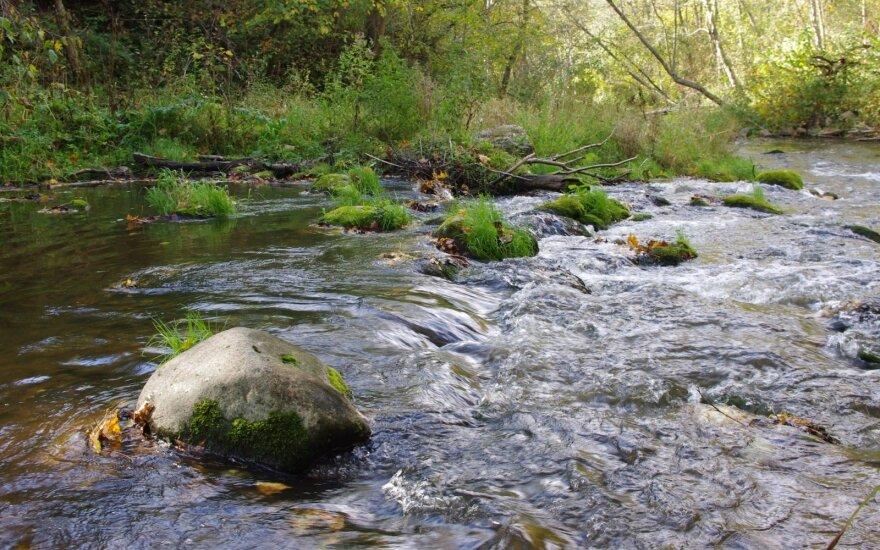 Neries regioninis parkas