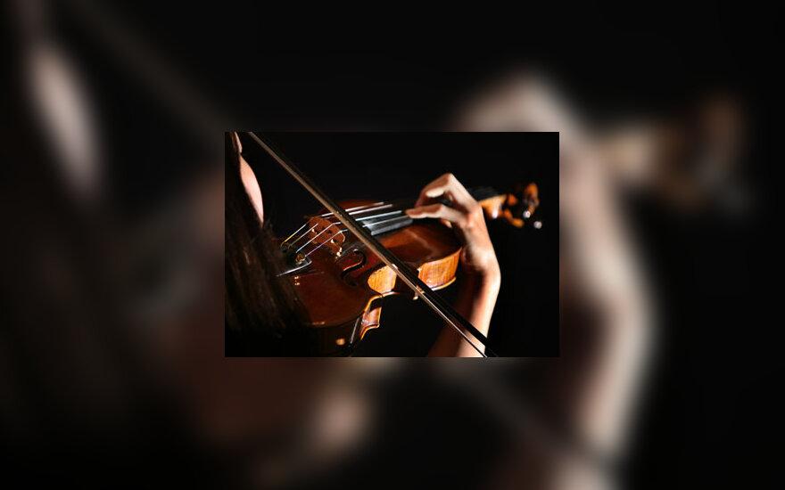 Smuikas, groti, muzika