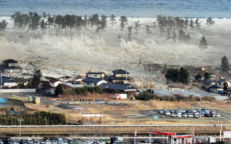 В пострадавших районах Японии не хватает 65 000 человек