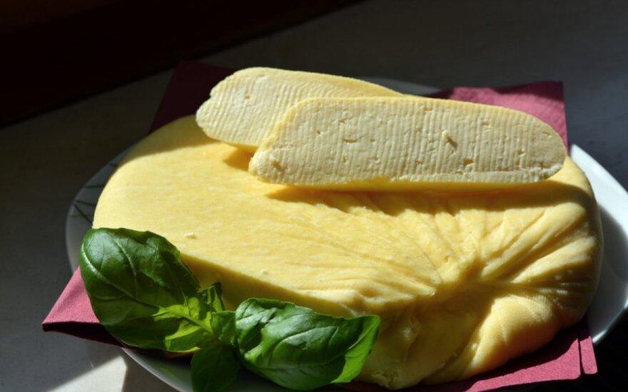 Украинцы в Литве обучались тонкостям сыроварения