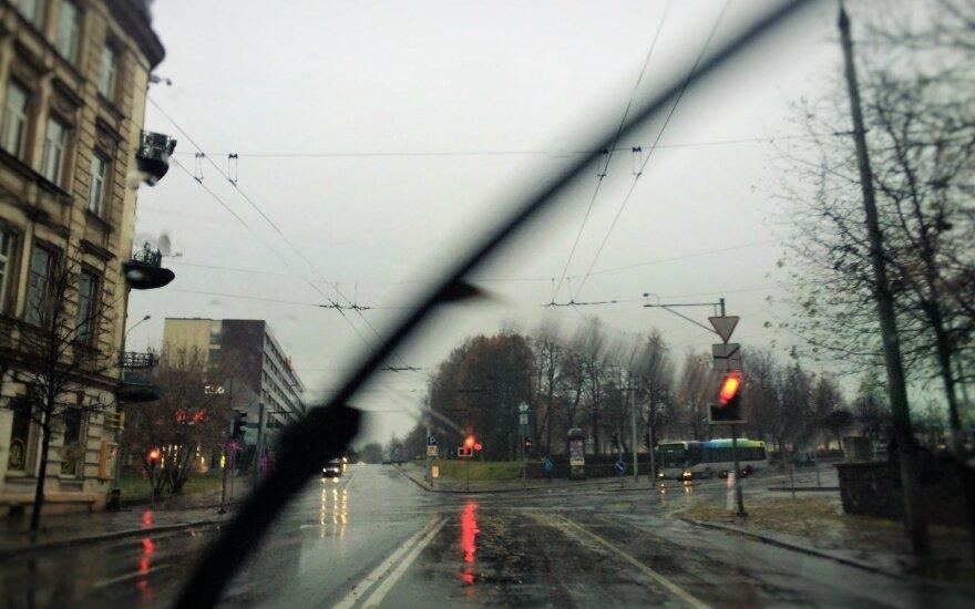 Погода: зима отменяется