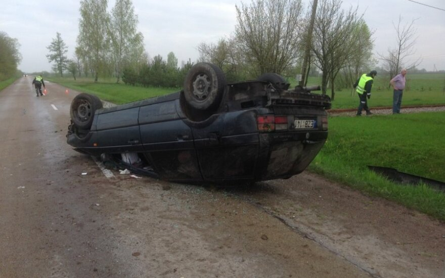 Из-за косули перевернулся автомобиль, пострадал водитель