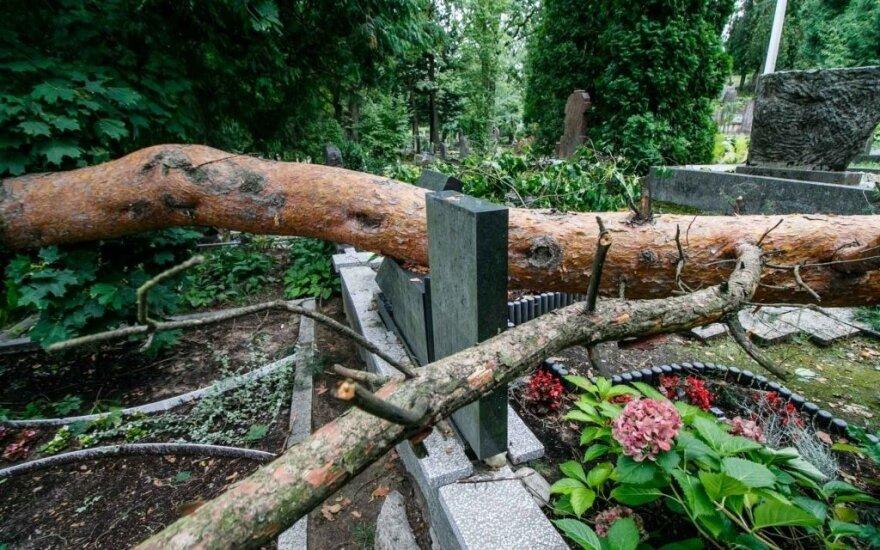 Шквальный ветер и ливень нанесли ущерб каунасскому кладбищу