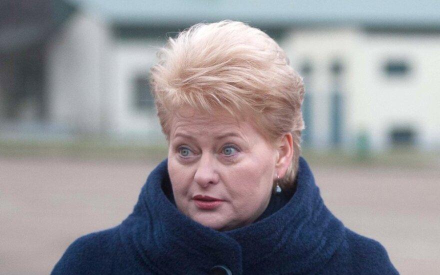 Президент Литвы: я не получала списка министров, который могла бы одобрить
