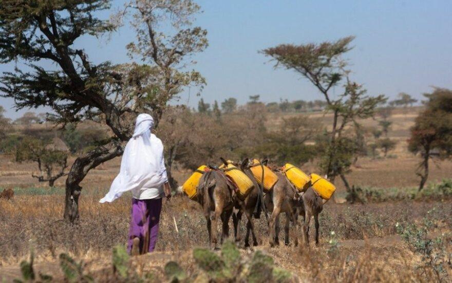Vidmantas Urbonas Etiopijoje