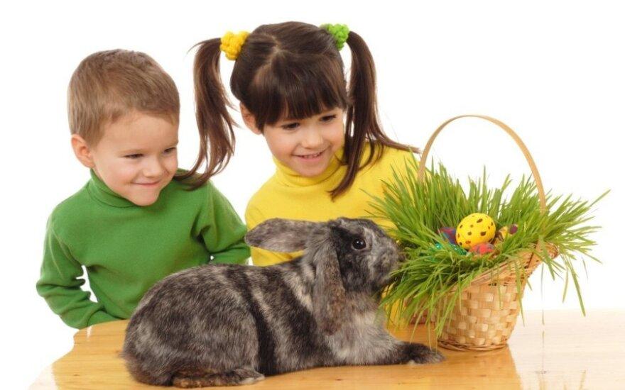 """Belgia: Od uczniów odebrano """"Wielkanoc"""" i """"Boże Narodzenie"""""""