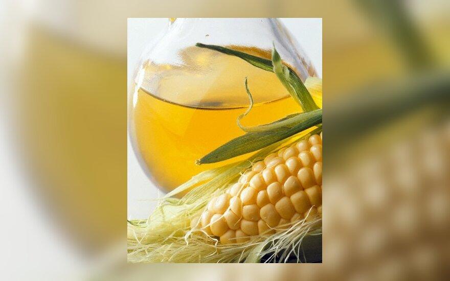 """В Литве """"без шума"""" распространились ГМО"""