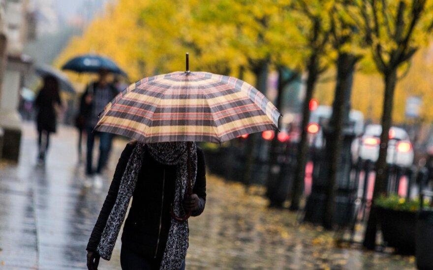 Погода: заметно потеплеет, но о себе напомнят ветер и дождь