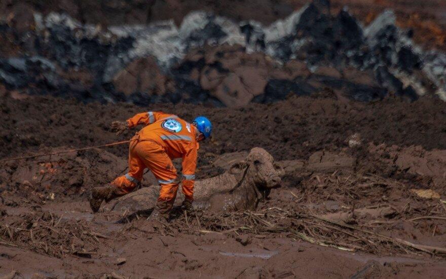Прорыв дамбы в Бразилии: 58 погибших, более 300 пропавших без вести