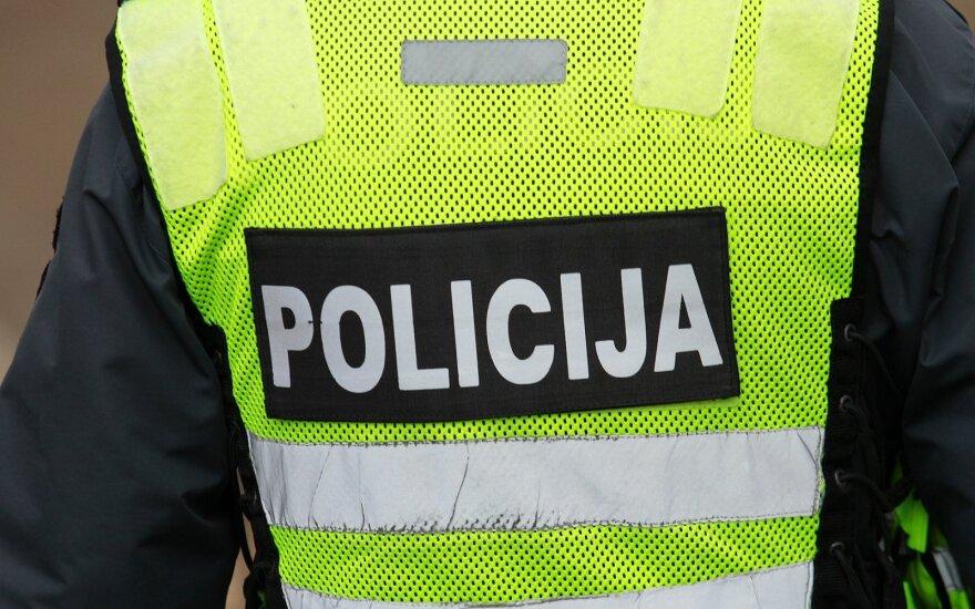 В Вильнюсе, в лесу у Сантаришкес, обнаружено оружие и снаряды