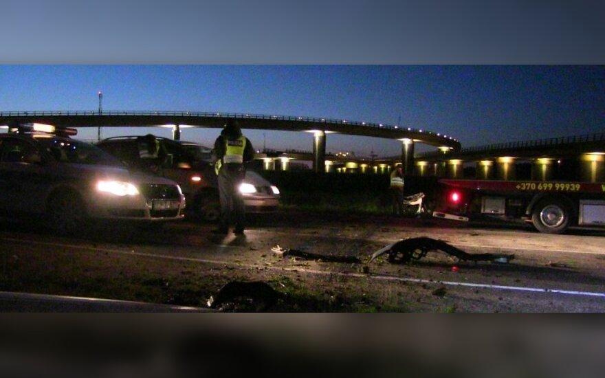 В Клайпеде автомобиль сбил двух лосей, водитель пострадал