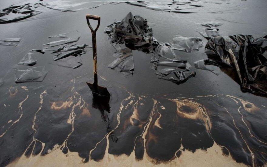 Naftos produktais užterštas teritorijas, kaip šį paplūdimį  būtų galima išvalyti gerokai pigiau