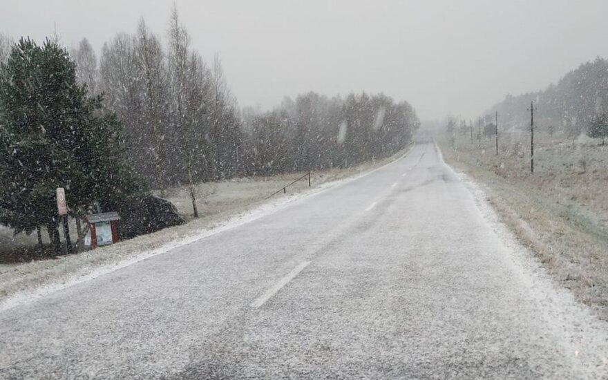 В Литве выпал первый снег