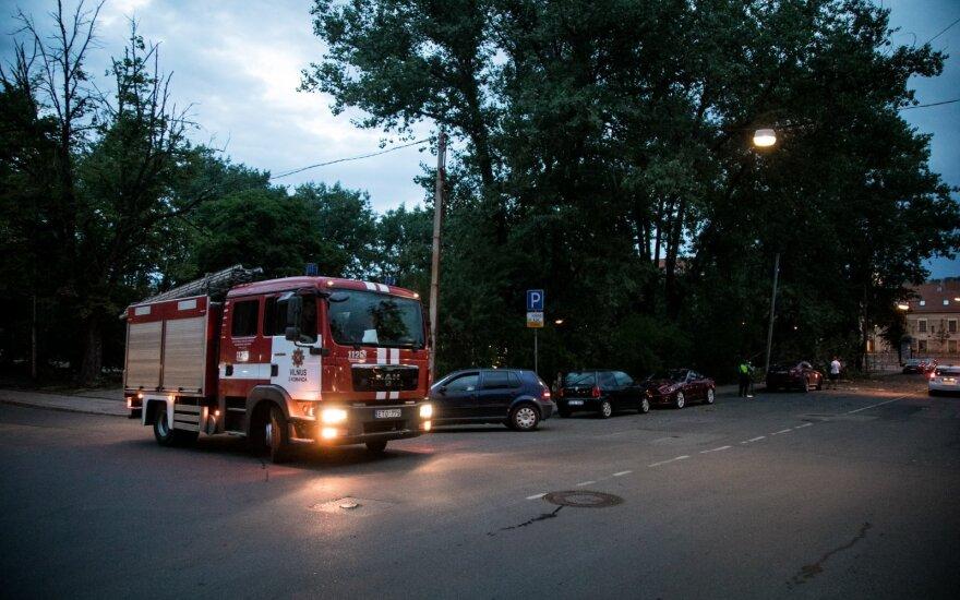 Сильный ветер валил в Литве деревья: пожарные выезжали по вызову 40 раз