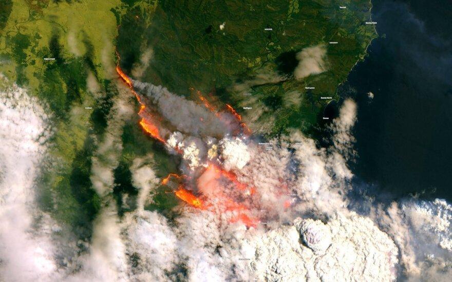 В Австралии бороться с лесными пожарами помогают резервисты