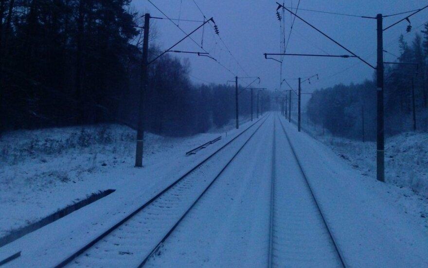 Под Вильнюсом поезд сбил людей: двое погибли