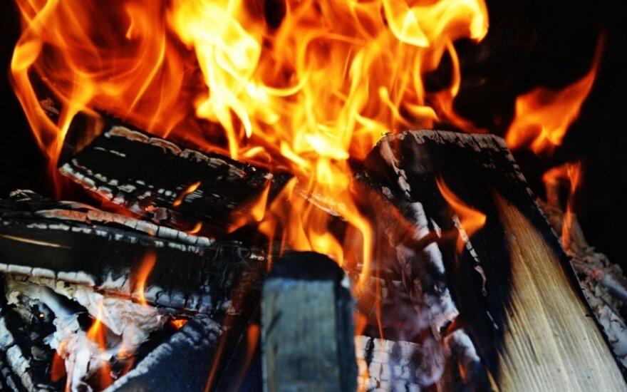 ugnis, laužas, malkos
