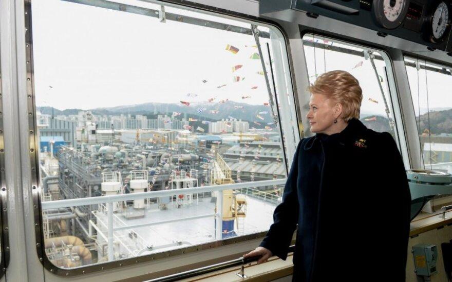 Президент: Литве нужно пересмотреть свою энергетическую стратегию